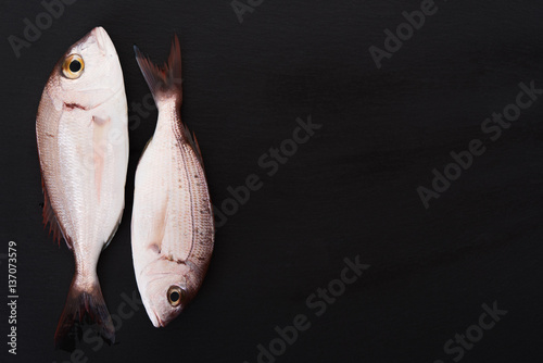 Raw fish on black board Poster
