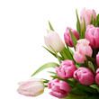 Pink tulip flowers bouquet