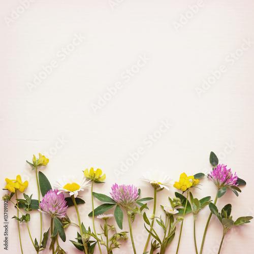 Wild flowers corner on paper background