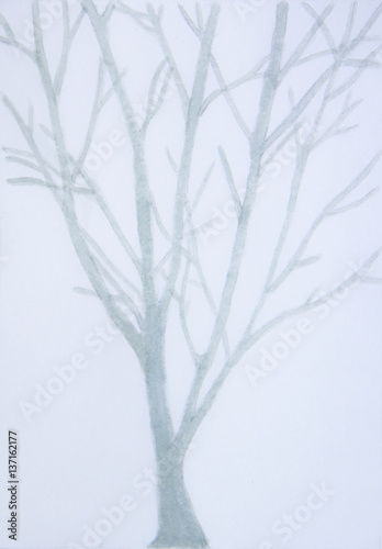 blurred picture of gray tree on gray background-Hand painted watercolor.  - 137162177