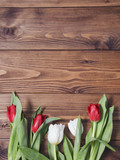 tulip flowers on wooden background