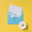 Spring or summer background with copy space for text: cyan envelope with butterfly contains business / credit / visiting card mockup and petals, white flower with yellow heart. Top view. Flat lay.
