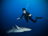 Underwater photo of woman diver with shark