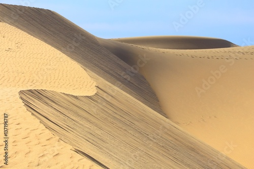 Deurstickers Canarische Eilanden Gran Canaria sand