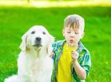 Kid with golden retriever dog blowing dandelion