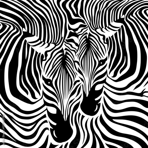Zebra Couple background. Black and white, vector illustration. Animal skin print texture.