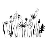 ector illustration of wild meadow flowers, herbs and grasses.