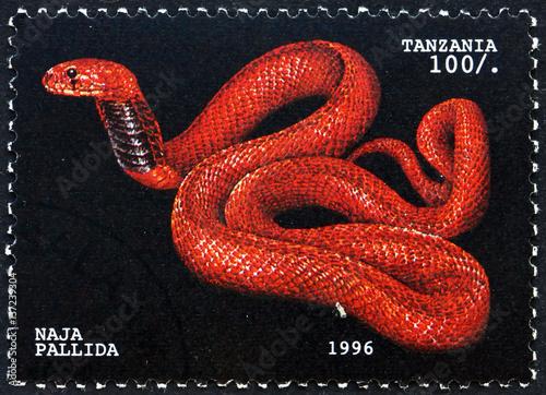 Aluminium Zanzibar Postage stamp Tanzania 1996 Red spitting cobra, snake