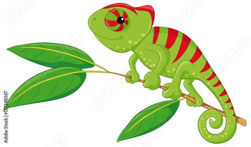 Ilustracja wektorowa ładny kameleon