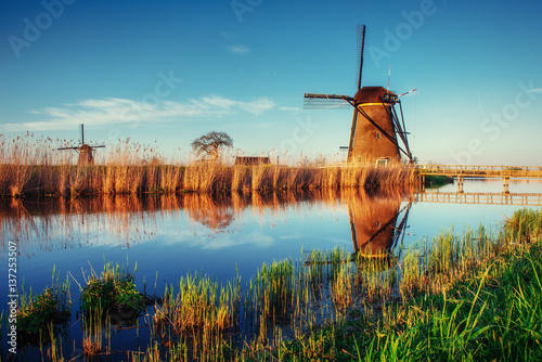 Foto op Plexiglas Rotterdam Traditional Dutch windmills from the channel Rotterdam. Holland