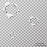 Torn paper realistic, holes in the sheet of paper on a transparent background. Vector illustration - 137254353