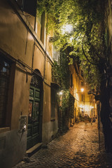 Street in Rome - night view.