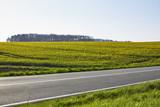 Straße zwischen Rapsfeldern