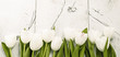 White tulips on wooden background - 137334722
