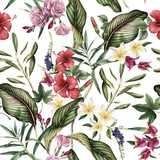Seamless tropical flower pattern, watercolor. - 137340988
