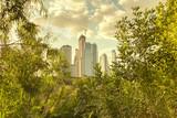 Stadt und Natur