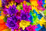 Multi colored dyed daisies in bouquets