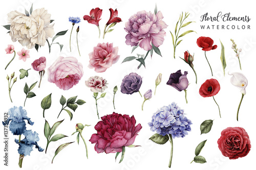 Leinwanddruck Bild Flowers and leaves, watercolor, can be used as greeting card, invitation card for wedding, birthday and other holiday and  summer background.