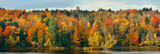 Lake Autumn Foliage - 137398567