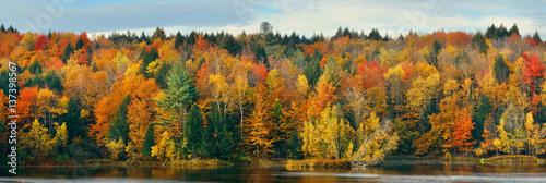 fototapeta na ścianę Lake Autumn Foliage