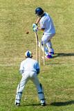 Cricket Batsman Ball Wicket Keeper Game Action