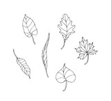 Set of hand drawn vector tree leaves. Line illustration. Isolated on white background. Easy to colorize.