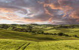 Rural landscape, Tuscany, Italy