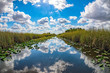 florida everglades view panorama landscape