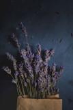 Lavender on black background