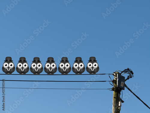 Poster Comical flock of businessmen birds perched on a cable