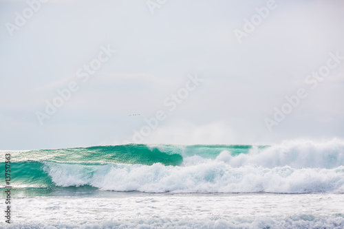 Blue waves in tropical ocean - 137517563