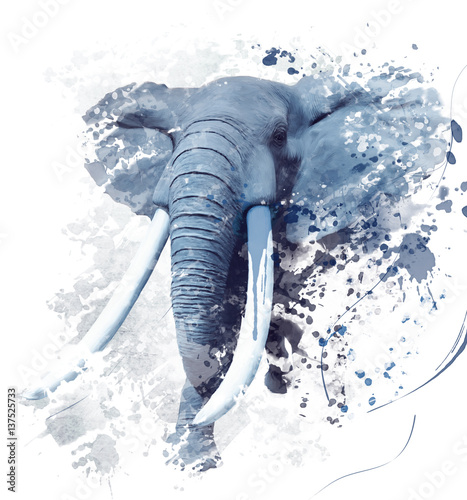 Elephant Portrait Watercolor