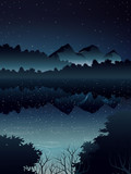high angle view of deep forest landscape and river when night