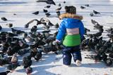 Little boy winter running after pigeons