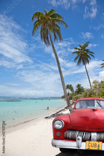 Poster voiture cubaine sous les cocotiers