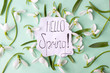 Постер, плакат: Hello spring calligraphy note with snowdrops