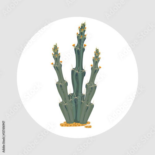 Foto op Canvas Cactus Simmple flat Cactus isoleted on white background