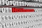 hostname in the form of binary code, 3D illustration