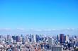 �京�風景