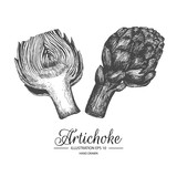 Set of artichoke. Hand drawn collection by ink and pen sketch. Isolated vector elements can use for fruit and vegetable products and health care goods packaging.