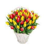 Bouquet of tulips - 137648320