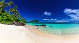 Panorama of Lalomanu beach on Samoa Island with coconut palm trees