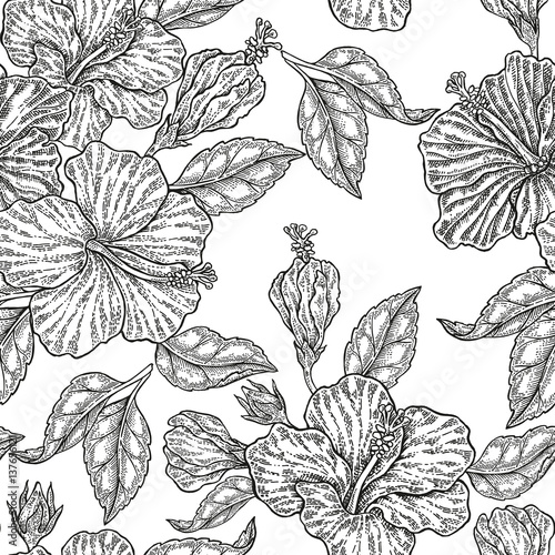Obraz na Szkle Vintage hibiscus flowers. Vector seamless pattern. Illustration for fabrics, gift packaging