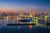 View of Tokyo city skyline in Odaiba-Tokyo, Japan