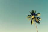 Coconut palm trees and shining sun with vintage effect. - 137698507