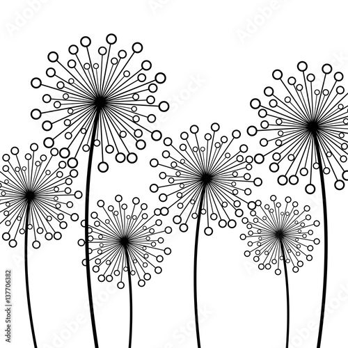 background-with-decorative-flowers-dandelions