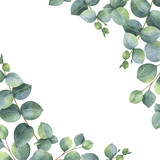 Watercolor green floral card with silver dollar eucalyptus leaves and branches isolated on white background. - 137744977