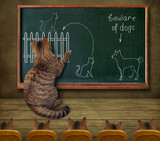 The cat teaches his pupils to beware of dogs.