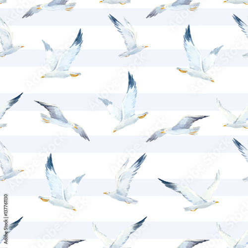 Watercolor seagull vector pattern - 137761130