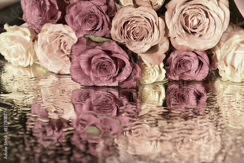 soft cream and pink roses on the shiny surface of the sparkling drops. a beautiful reflection surface. Vintage style